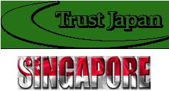 シンガポール調査項目