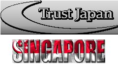 シンガポールでの調査事例