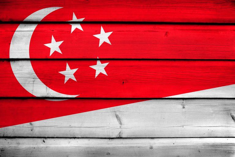 シンガポールで行方不明者の所在調査